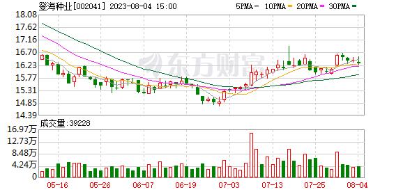 登海种业(002041)K线图,股价走势