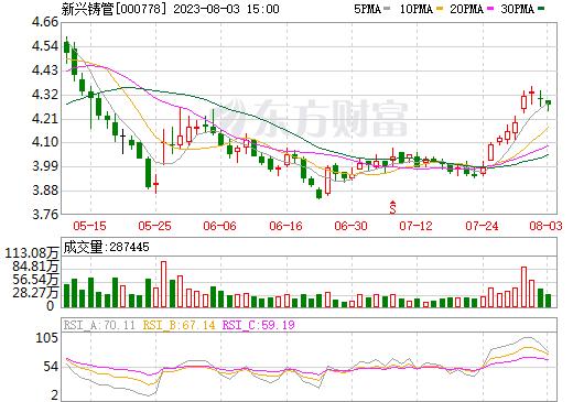 新兴铸管(000778)