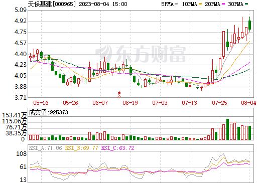 天保基建(000965)