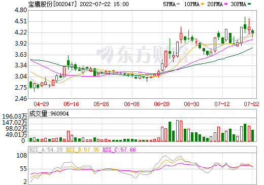 宝鹰股份(002047)