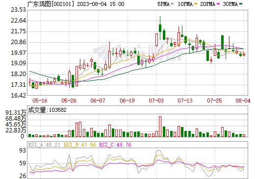 广东鸿图(002101)