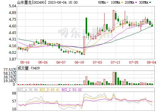 山东墨龙(002490)
