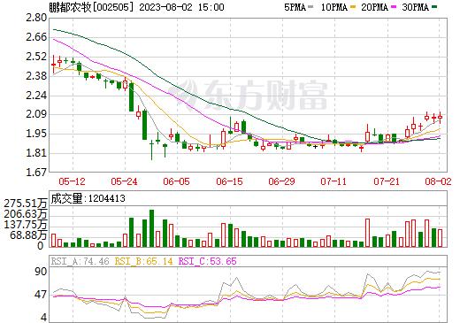 大康农业(002505)