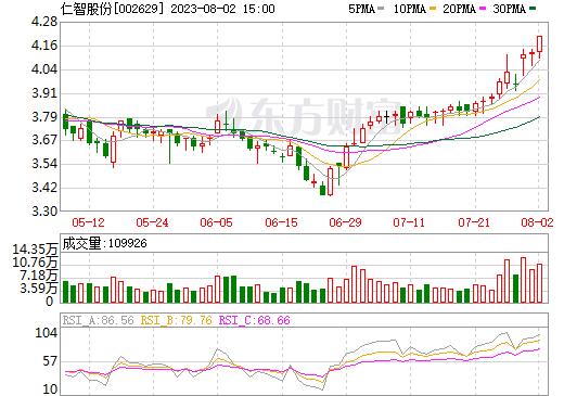 *ST仁智(002629)