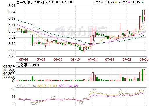 仁东控股(002647)
