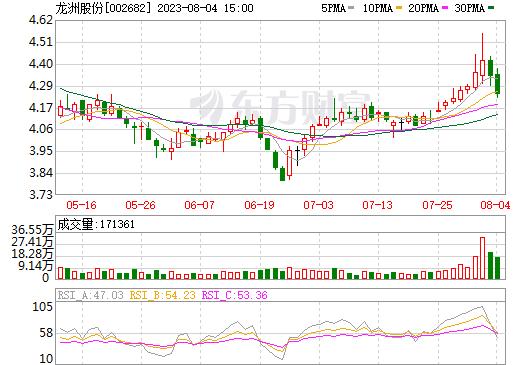 龙洲股份(002682)