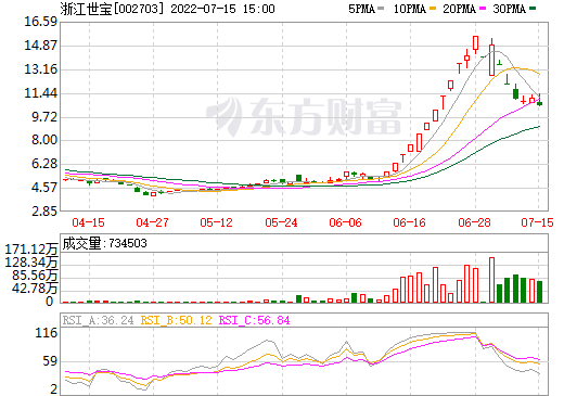 浙江世宝(002703)