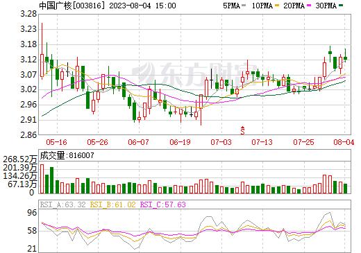 中国广核(003816)
