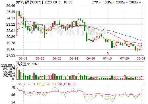 数字政通(300075)