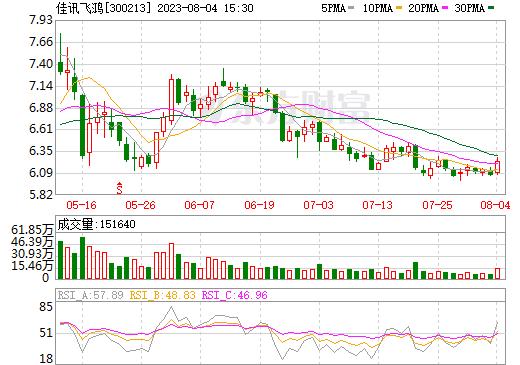 佳讯飞鸿(300213)