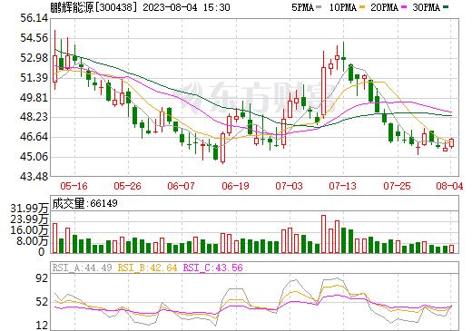 鹏辉能源(300438)