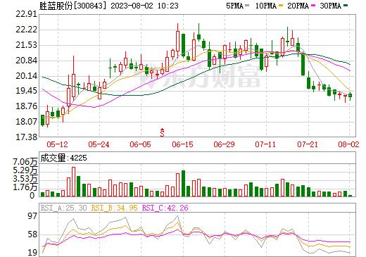 胜蓝股份(300843)