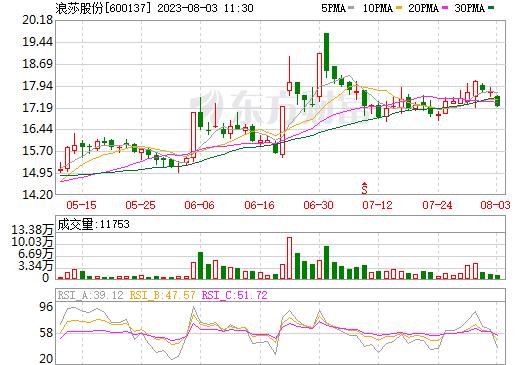 浪莎股份(600137)