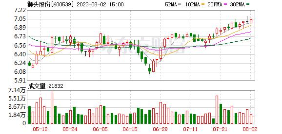 ST狮头(600539)历史交易数据