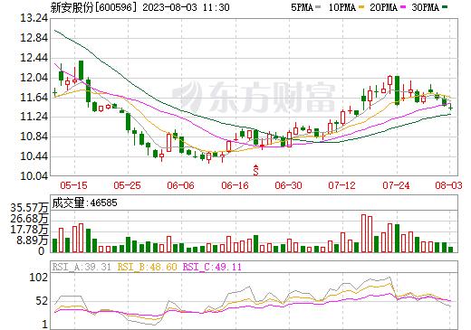 新安股份(600596)