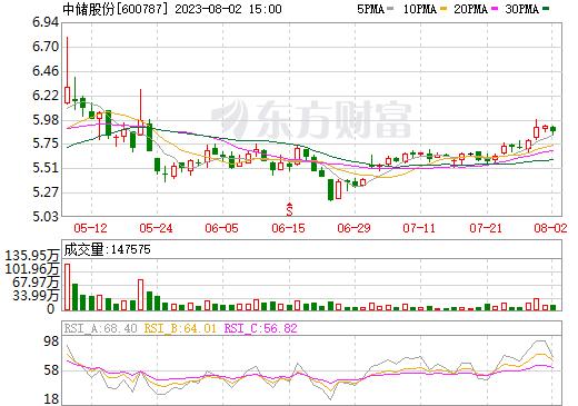 中储股份(600787)