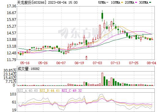天龙股份(603266)