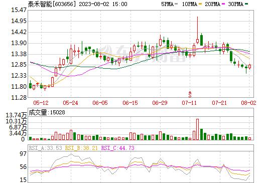泰禾光电(603656)
