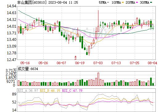 丰山集团(603810)