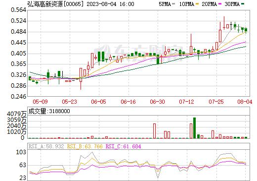弘海高新资源(00065)