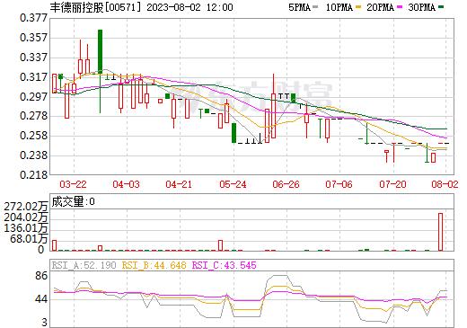 丰德丽控股(00571)