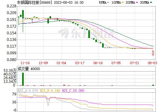东银国际控股(00668)