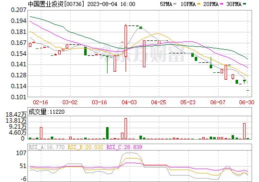 中国置业投资(00736)