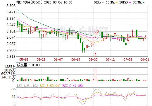 神州控股(00861)