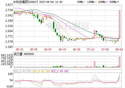 BC科技集团(00863)