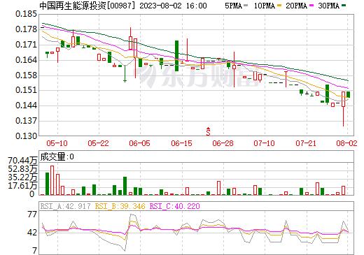 中国再生能源投资(00987)