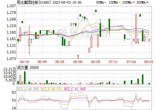 恩达集团控股(01480)