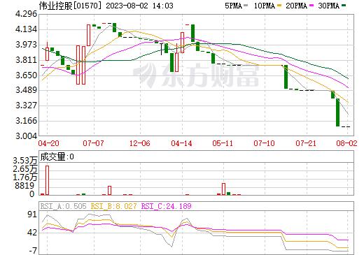 伟业控股(01570)