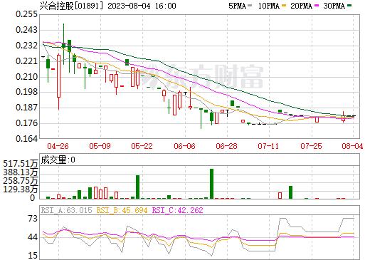 兴合控股(01891)