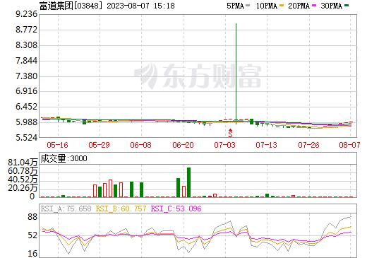 富道集团(03848)