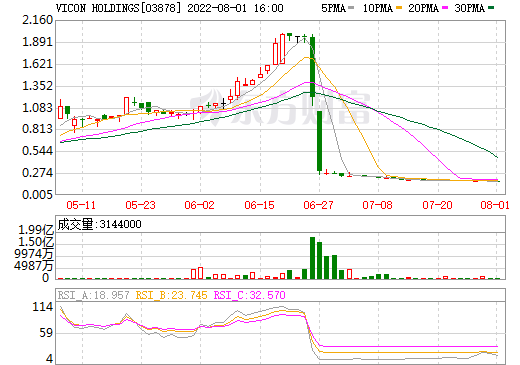 VICON HOLDINGS(03878)