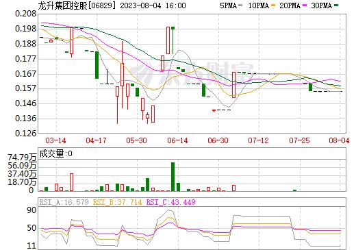 龙升集团控股(06829)