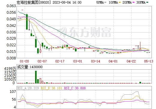 宏海控股集团(08020)