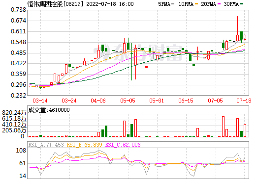 恒伟集团控股(08219)