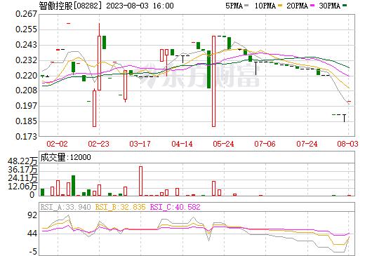智傲控股(08282)