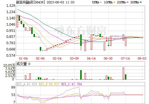 新百利融资(08439)