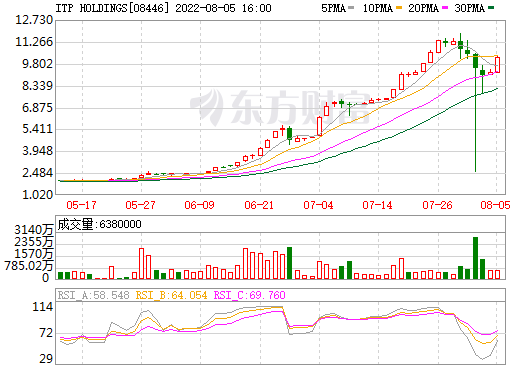 ITP HOLDINGS(08446)