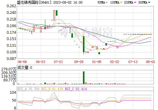 盛龙锦秀国际(08481)