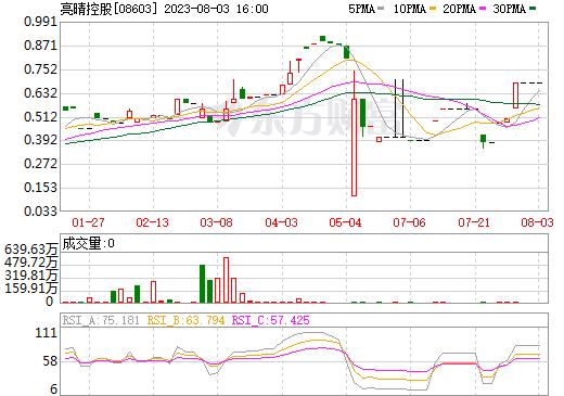 亮晴控股(08603)