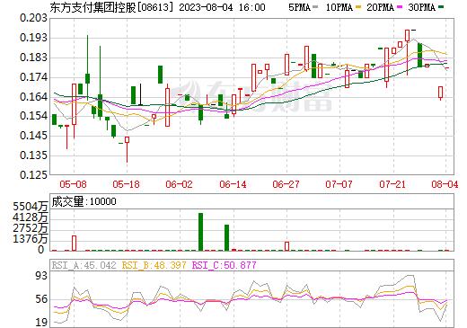 东方支付集团控股(08613)