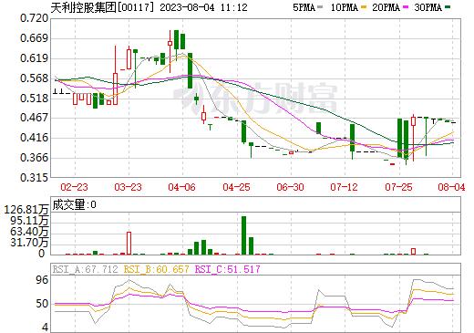 天利控股集团(00117)