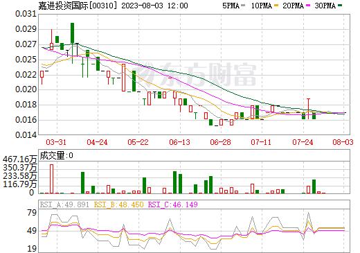 嘉进投资国际(00310)