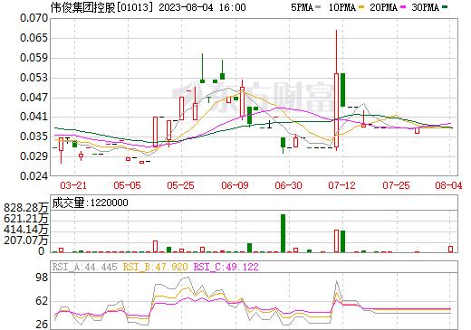 伟俊集团控股(01013)