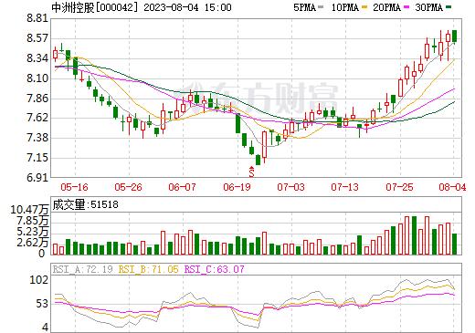 中洲控股(000042)