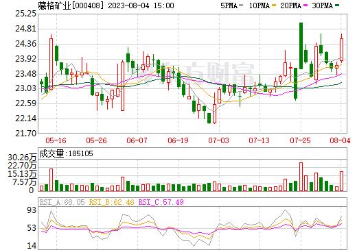 藏格控股(000408)