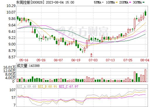 东莞控股(000828)